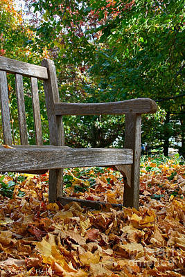 Photograph - Limited Outdoor Seating by Susan Herber