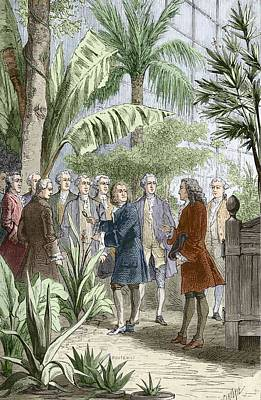 Linnaeus And De Jussieu, Botanists Art Print