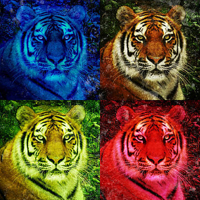 Photograph - Lion Face Colored Squares by Angela Waye