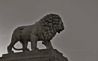 Photograph - Lion Guard by Eric Tressler