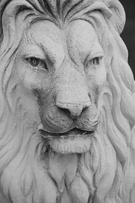 Photograph - Lion In Stone by Rob Hans