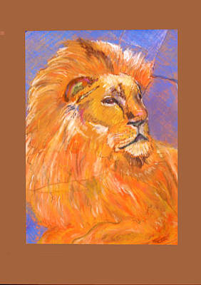 Drawing - Lion King by Karen Camden Welsh