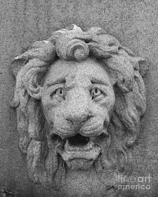 Photograph - Lion Memorial by Margie Avellino