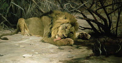 Paws Painting - Lion Reclining In A Landscape by Wilhelm Kuhnert