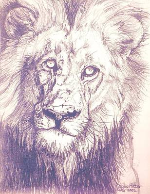 Lion Stare Original by Cecilia Putter