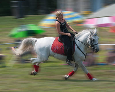 Photograph - Lipizzaner At A Gallop by Barry Doherty