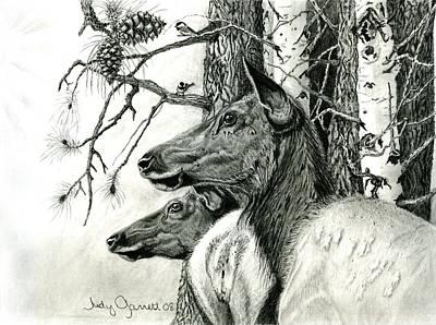 Chickadee Drawing - Listening To The Bugle by Judy Garrett