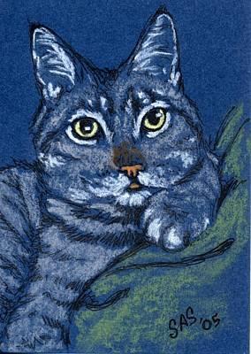 Gray Tabby Drawing - Little Bear by Sherri Strikwerda