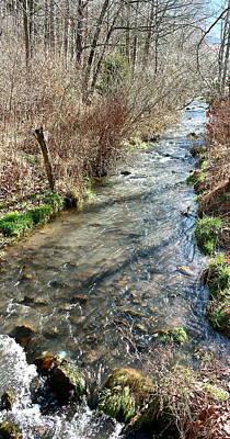 Photograph - Little Cedar Creek by Kume Bryant