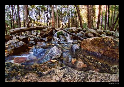 Photograph - Little Creek by Blake Richards