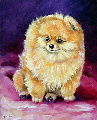 Pomeranian Painting - Little Dude - Pomeranian by Lyn Cook