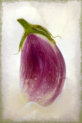 Photograph - Little Eggplant by Marilyn Hunt