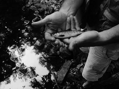 Little Fish Print by Sarah Buechler