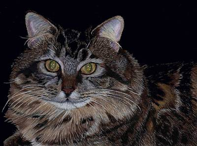 Little Girl - Maine Coon Cat Painting Art Print