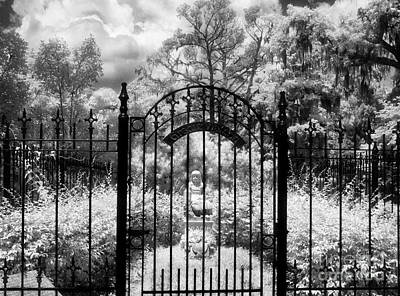 Savannah Infrared Photograph - Little Gracie by Jeff Holbrook
