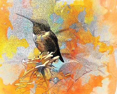Digital Art - Little Hummer by Carrie OBrien Sibley