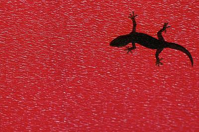 Little Lizard Art Print by Hidayat Mercado