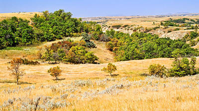Little Missouri River Grasslands Print by Bill Morgenstern