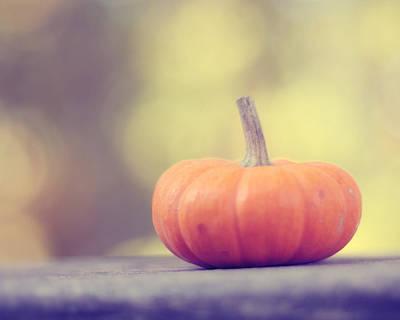 Of Autumn Photograph - Little Pumpkin by Amy Tyler