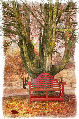 Little Red Bench Art Print by Debra and Dave Vanderlaan
