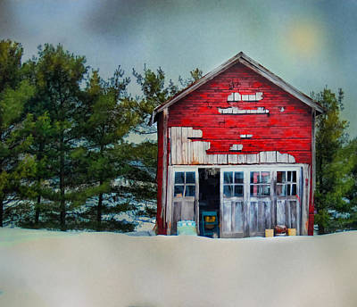 Art Print featuring the photograph Little Red Shed by Mary Timman