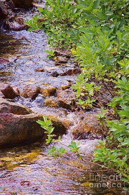 Photograph - Little Stream - Utah by Donna Greene