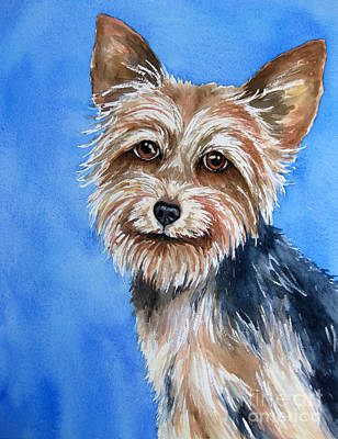 Little Yorkie Art Print by Cherilynn Wood