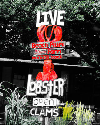 Digital Art - Live Lobster Kennebunkport Me by Lizi Beard-Ward