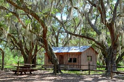 Digital Art - Live Oak Cabin by Bob Jackson