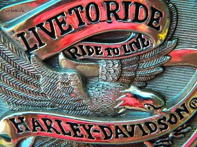 Photograph - Live To Ride In Chrome by Chris Berry