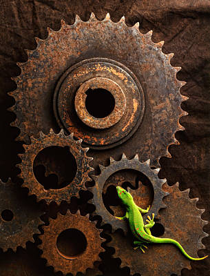 Lizard On Gears Art Print by John Wong