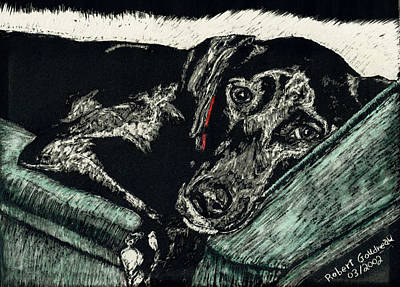 Scratchboard Painting - Lizzie The Dog by Robert Goudreau