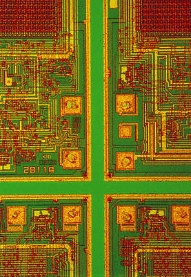 Integrated Photograph - Lm Of A Wafer by David Parker