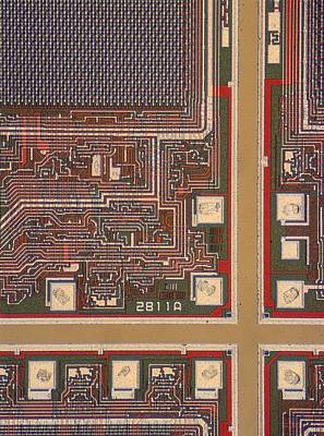 Integrated Photograph - Lm Of A Wafer Of Integrated Circuits by David Parker