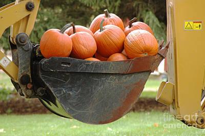 Load Of Pumpkins Art Print by Ginger Harris