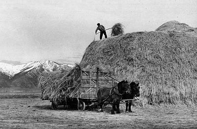 Loading Hay Art Print by Arthur Rothstein
