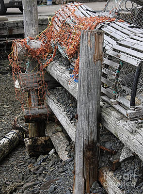 Photograph - Lobster Trap by Tom Griffithe