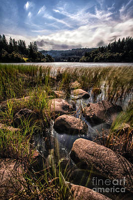 Loch Ard From The Reed Beds Art Print