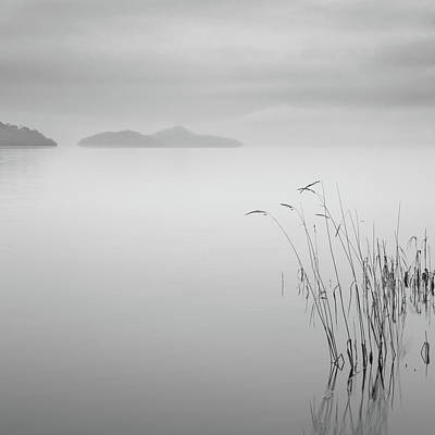 Loch Lomond Grass Art Print by Billy Currie Photography
