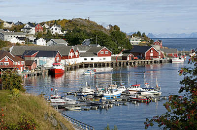 Photograph - Lofoten Islands, Sørvågen Harbor by Olivier Anger