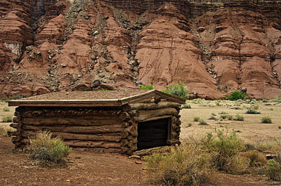 Log Cabins Photograph - Log Cabin In The Desert by Dave Dilli