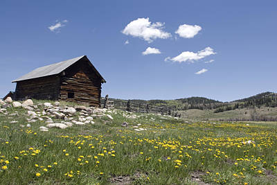 Log Cabin On The High Country Ranch Print by Rich Reid