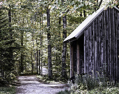 Photograph - Logging Shed by Anne Raczkowski