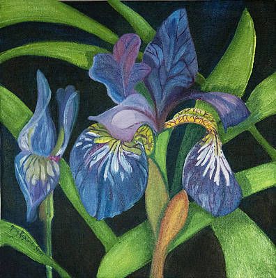 Lois' Iris Art Print by Amy Reisland-Speer