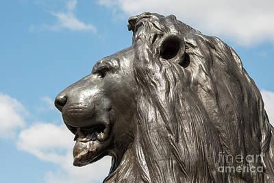 Lion Photograph - London Lion by Andrew  Michael