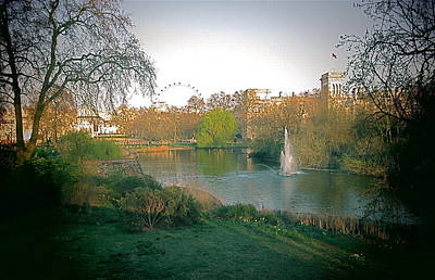 Art Print featuring the photograph London Park by Blake Yeager