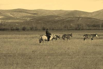Photograph - Lone Mongolian Rider by Diane Height