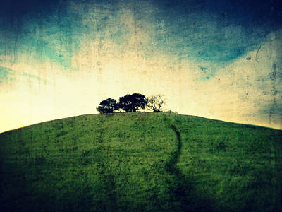 Photograph - Lonely Hill by Matt Hanson