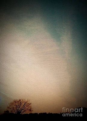 Photograph - Lonely Tree by Eena Bo