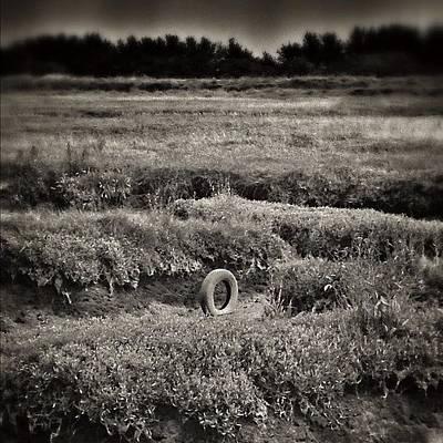 Marsh Photograph - Long Forgotten by Amber McCauley